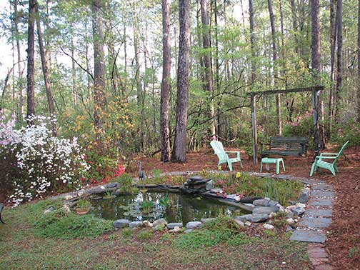 Wild Backyard Garden : SC Wildlife Magazine