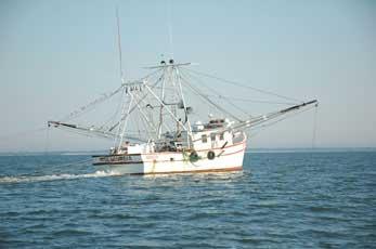 Small Boats: Shrimp Nets For Small Boats