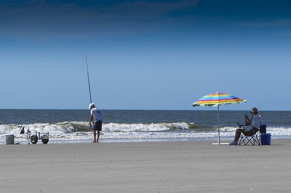 Sc wildlife magazine for Island beach state park fishing